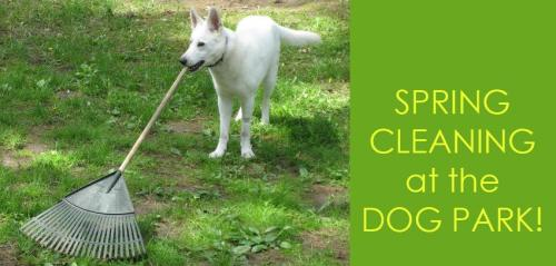 spring-cleaning-dog-park